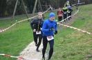 Crosslauf 2018 - Bilder von Joachim